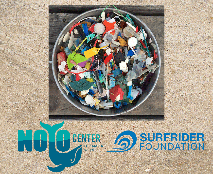 International Coastal Cleanup Day is Saturday, September 16th